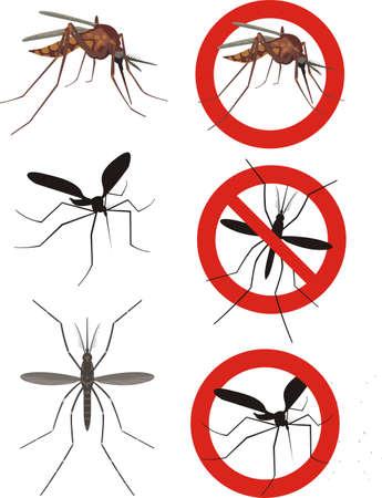 Mosquito Control Miami